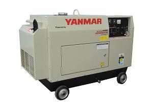 YDG5001SE-D 4 KVA